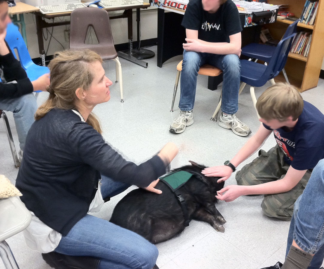 """animal assisted therapy Whether certified or trained for therapy sessions, or simply a companion, the benefits of an animal in any capacity is undeniable the words """"who saved who"""" rings particularly true to those."""