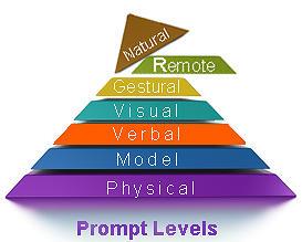 remote prompting